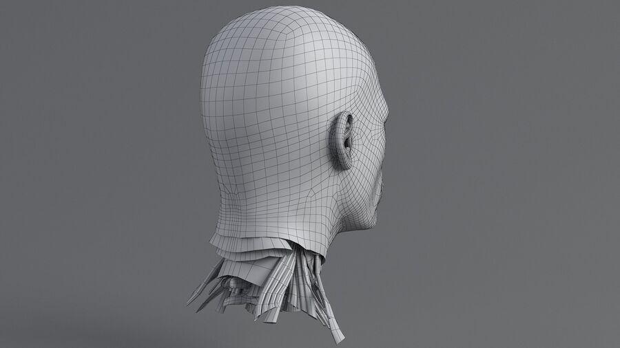 人間の頭の解剖学 royalty-free 3d model - Preview no. 42