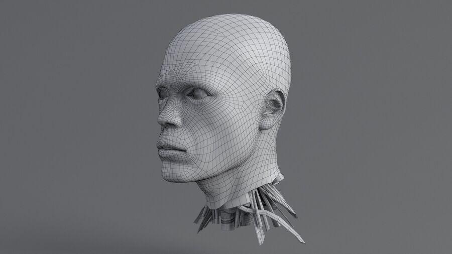 人間の頭の解剖学 royalty-free 3d model - Preview no. 39