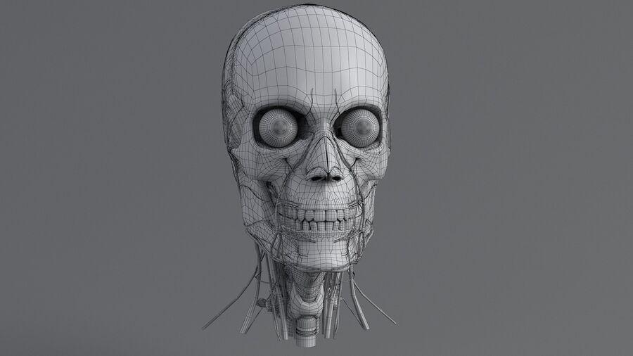 人間の頭の解剖学 royalty-free 3d model - Preview no. 52
