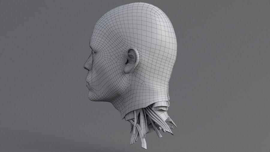 人間の頭の解剖学 royalty-free 3d model - Preview no. 43