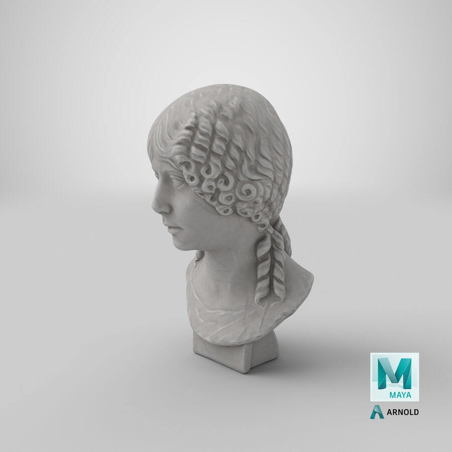 Buste van een meisje royalty-free 3d model - Preview no. 35
