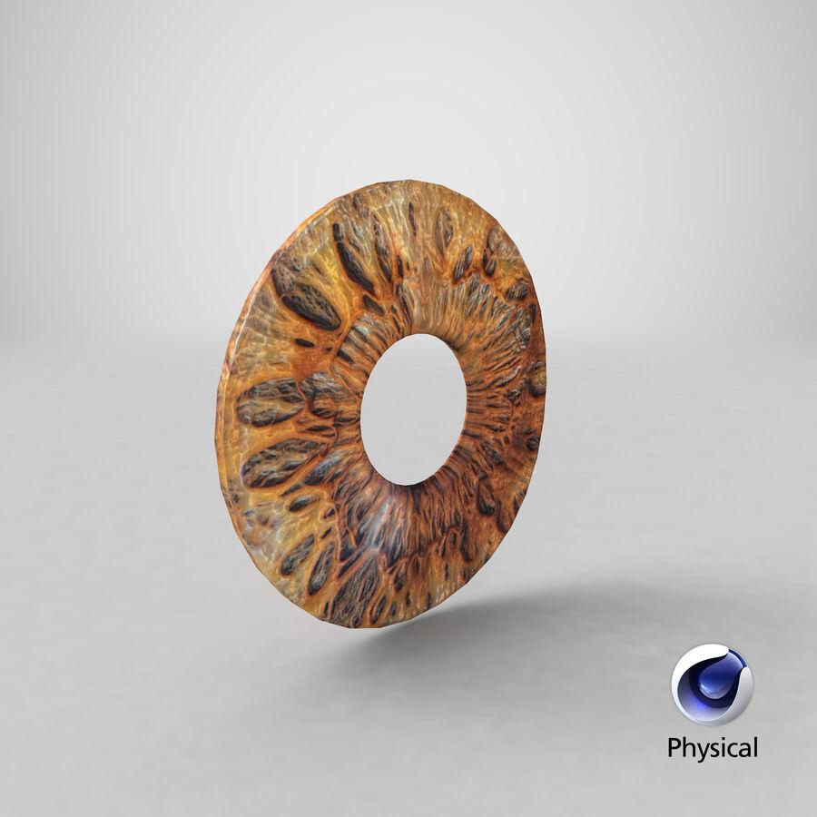 Human Iris royalty-free 3d model - Preview no. 11