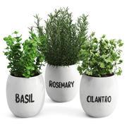 Conjunto de plantas de vegetação branco 3d model
