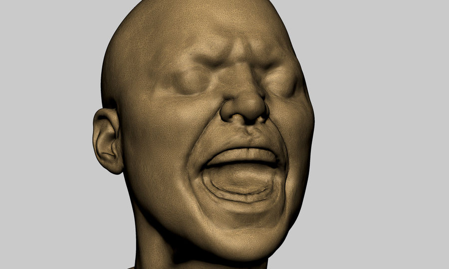 Female Head v5 royalty-free 3d model - Preview no. 8