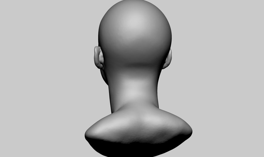 Female Head v5 royalty-free 3d model - Preview no. 4