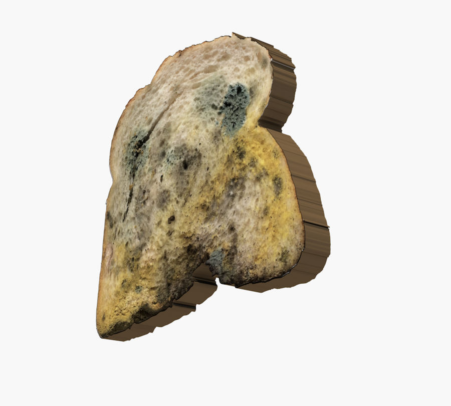 moldy bread royalty-free 3d model - Preview no. 5