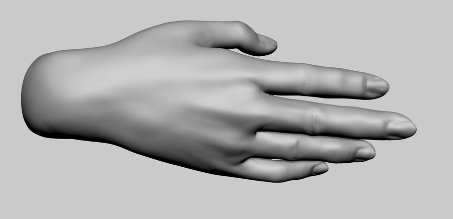 Female Hand Printable royalty-free 3d model - Preview no. 5