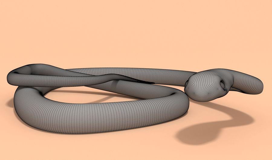 Scarlet King snake royalty-free 3d model - Preview no. 11