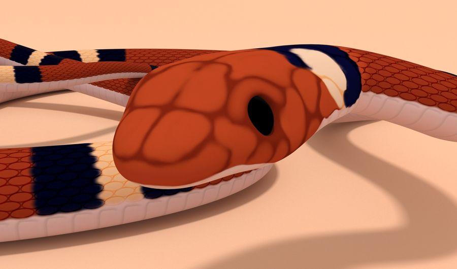 Scarlet King snake royalty-free 3d model - Preview no. 7