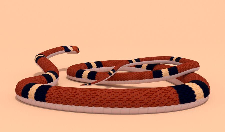 Scarlet King snake royalty-free 3d model - Preview no. 10