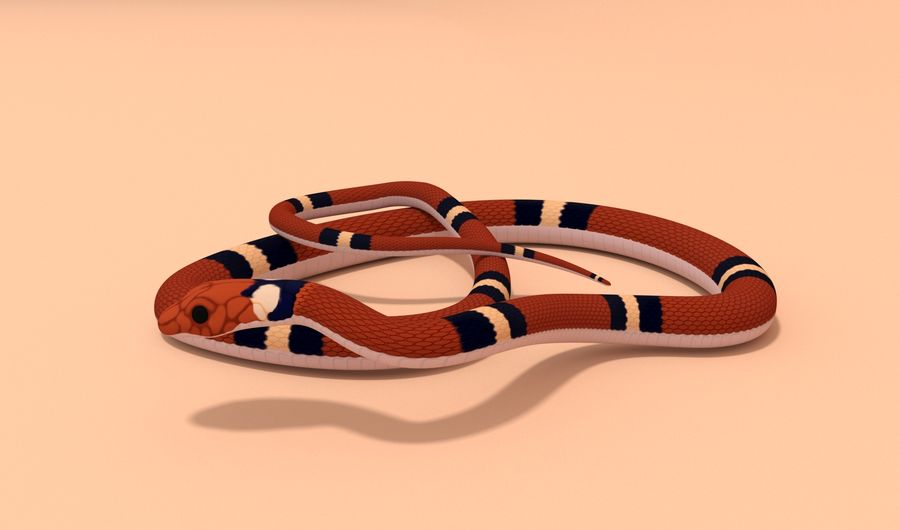 Scarlet King snake royalty-free 3d model - Preview no. 2