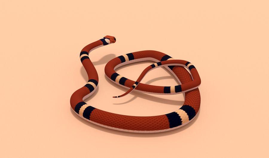 Scarlet King snake royalty-free 3d model - Preview no. 5