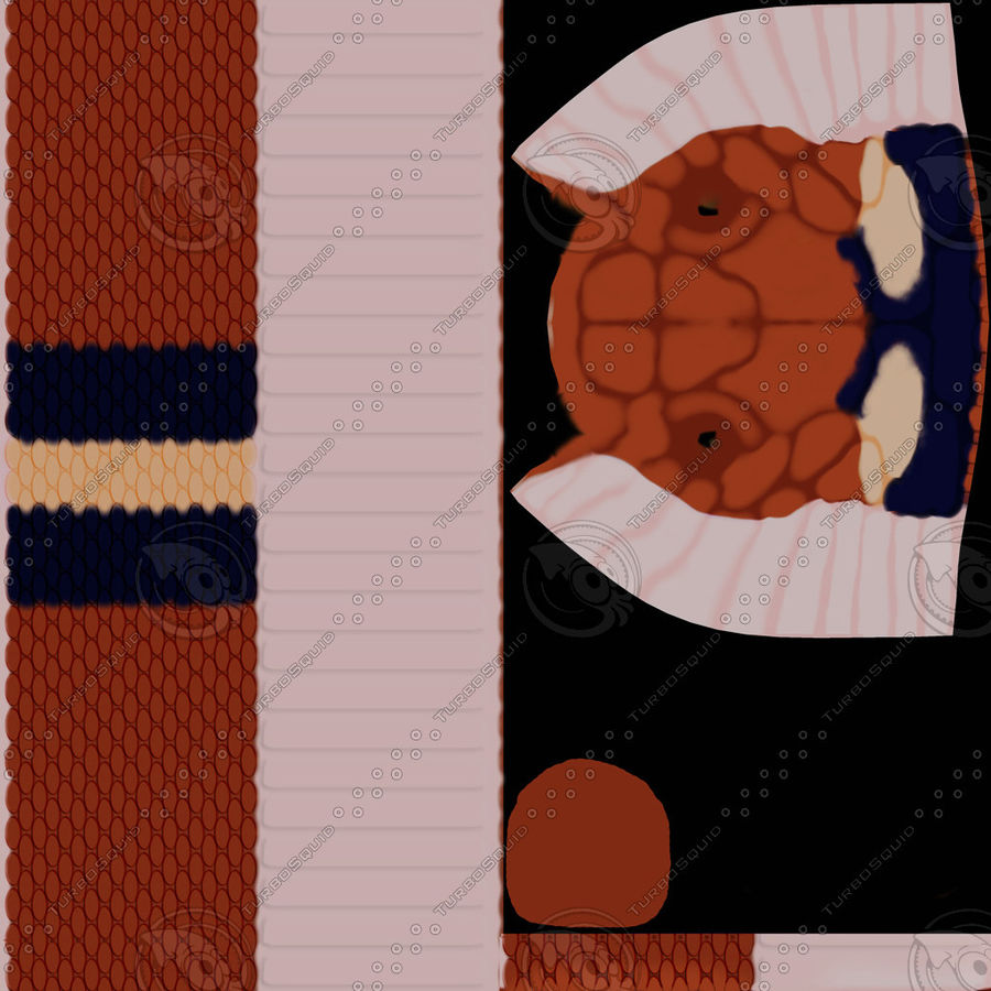 Scarlet King snake royalty-free 3d model - Preview no. 16
