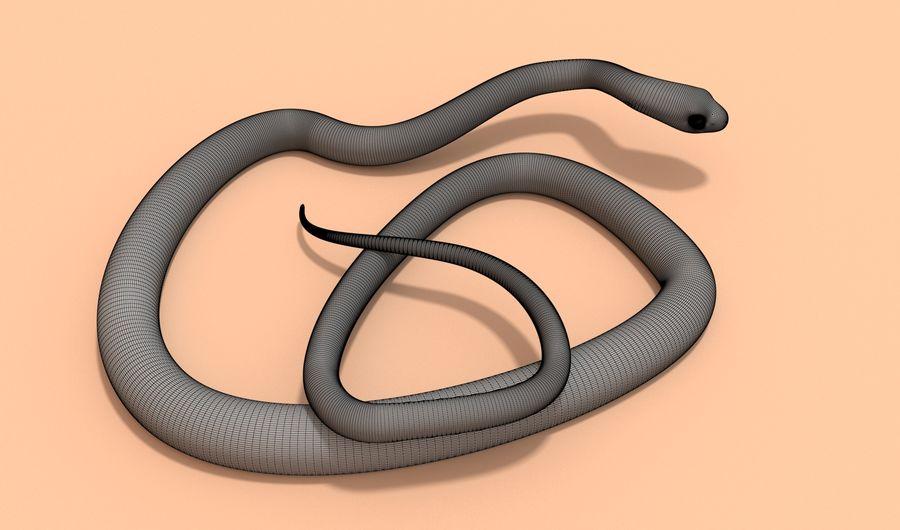 Scarlet King snake royalty-free 3d model - Preview no. 14