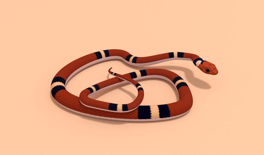 Scarlet King snake royalty-free 3d model - Preview no. 3