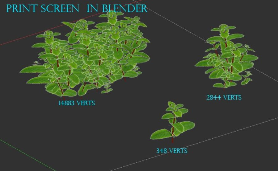 mint herb plants royalty-free 3d model - Preview no. 13