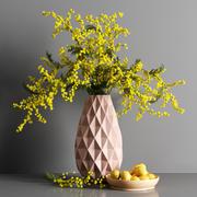 Mimosa e Limone 3d model