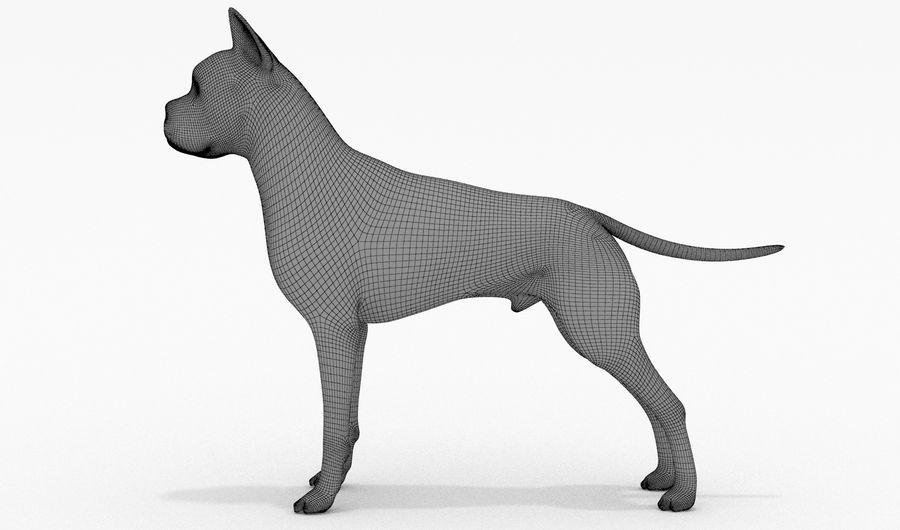 German Boxer Dog royalty-free 3d model - Preview no. 14