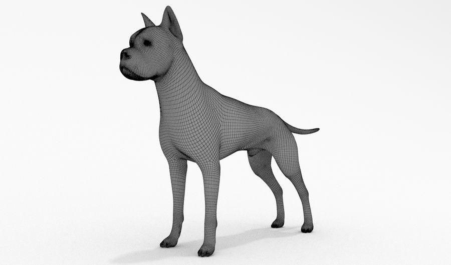 German Boxer Dog royalty-free 3d model - Preview no. 13