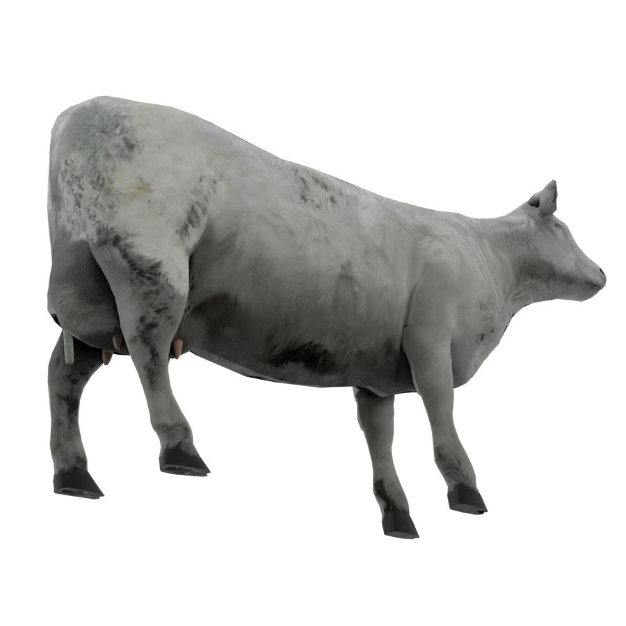 Cow Animated Rigged royalty-free 3d model - Preview no. 2