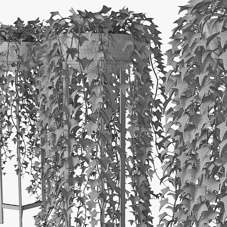 Ivy in pot 15 royalty-free 3d model - Preview no. 12