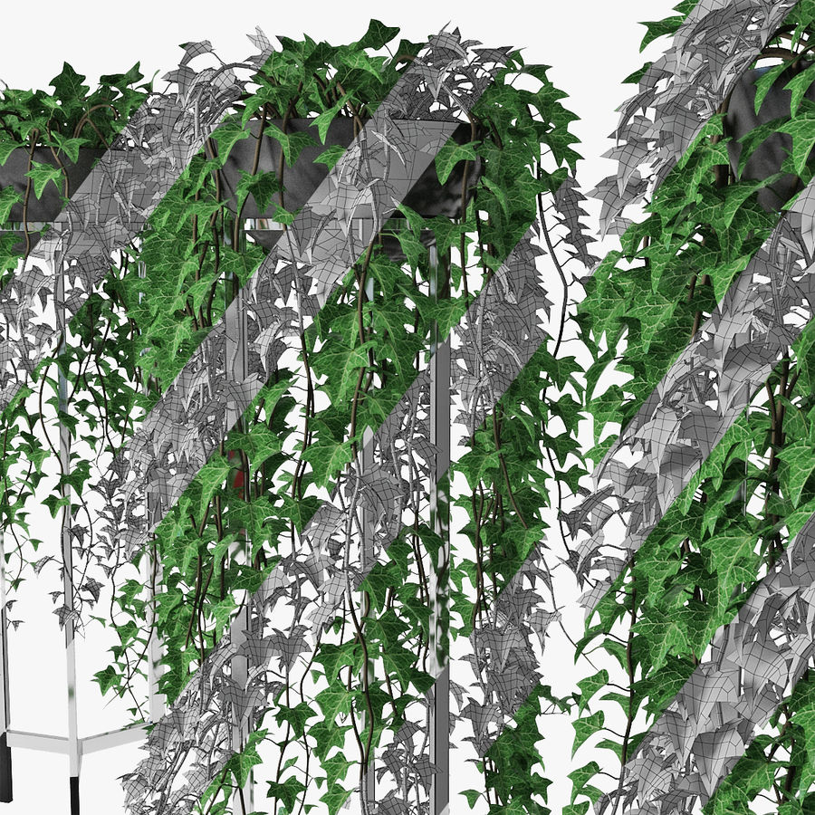 Ivy in pot 15 royalty-free 3d model - Preview no. 13