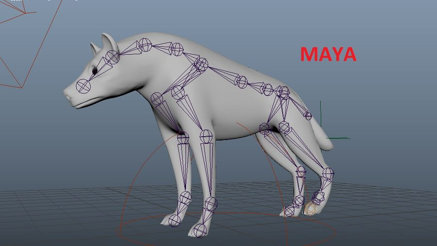 Realistic Rigged Low Poly Hyena royalty-free 3d model - Preview no. 7