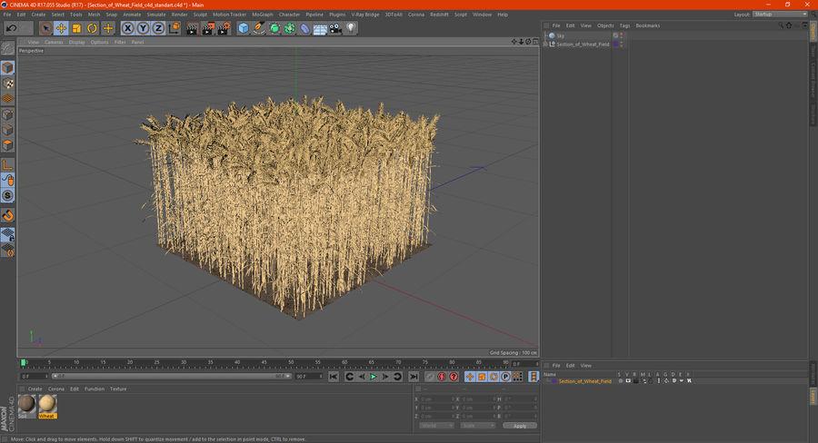 Buğday Tarlası Bölümü royalty-free 3d model - Preview no. 22
