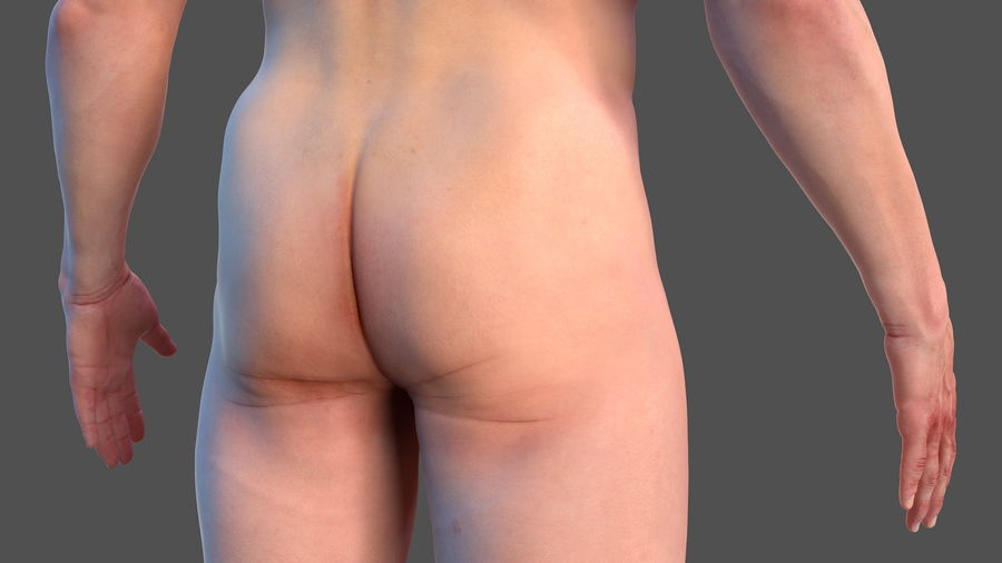 Male Body Anatomy Collection(1) royalty-free 3d model - Preview no. 11