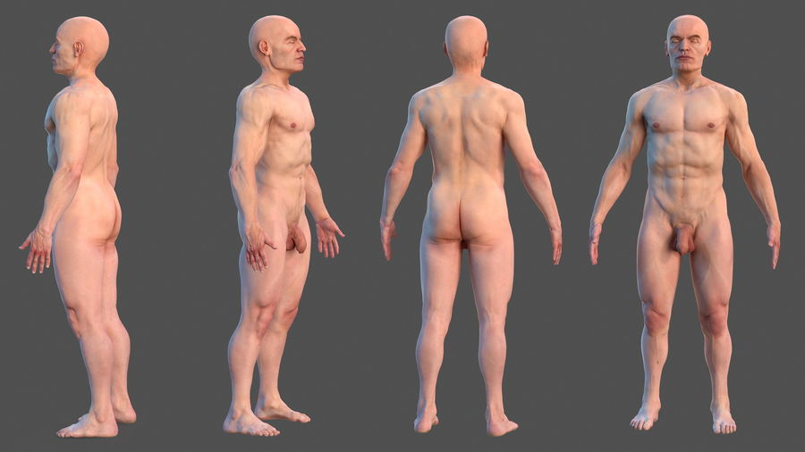 Male Body Anatomy Collection(1) royalty-free 3d model - Preview no. 3