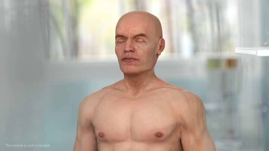 Male Body Anatomy Collection(1) royalty-free 3d model - Preview no. 4