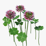 Blooming Red Clover Field 3d model