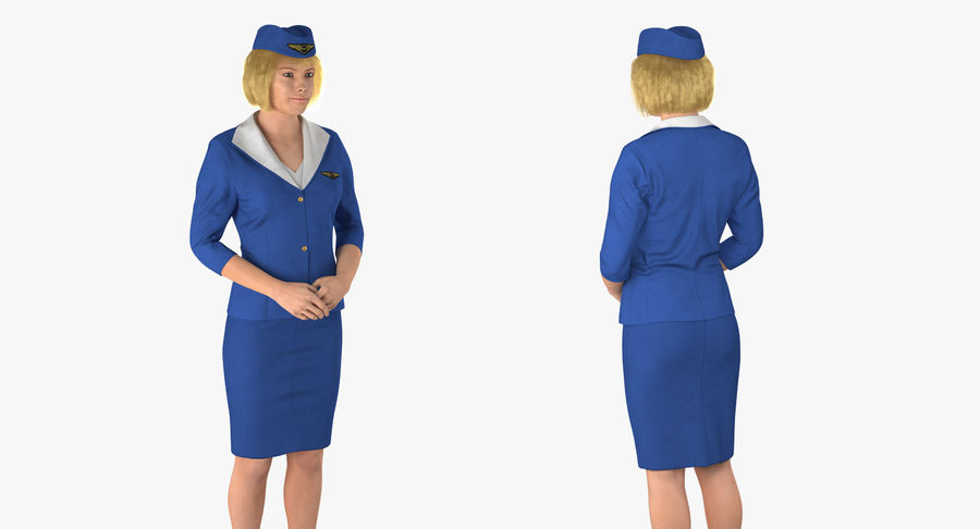 Commercial Airliner with Pilot and Stewardess Collection royalty-free 3d model - Preview no. 20
