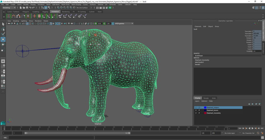 Animated Elephants Collection för Maya royalty-free 3d model - Preview no. 29