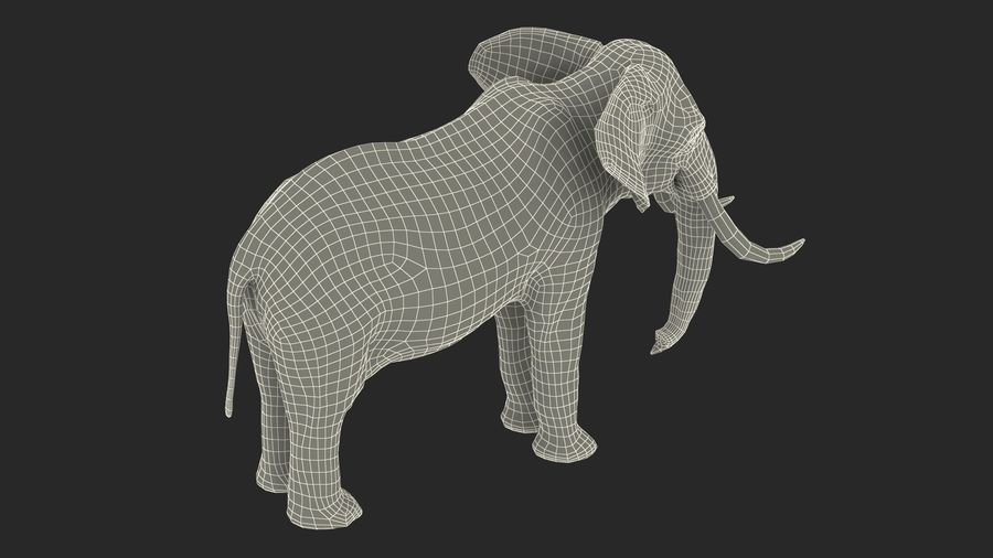 Animated Elephants Collection för Cinema 4D royalty-free 3d model - Preview no. 33