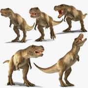 Collection animée Tyrannosaurus Rex pour Cinema 4D 3d model
