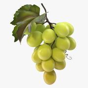 Гроздь свежего зеленого винограда 3d model