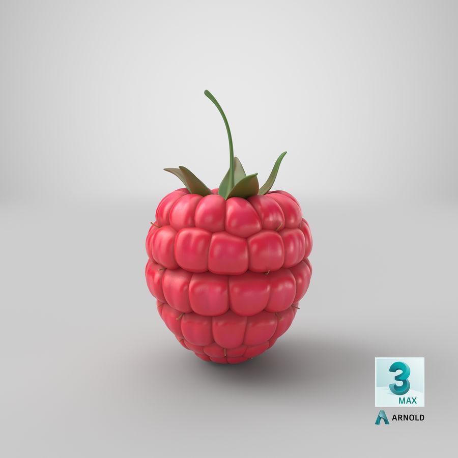 Fresh Cartoon Raspberry royalty-free 3d model - Preview no. 30