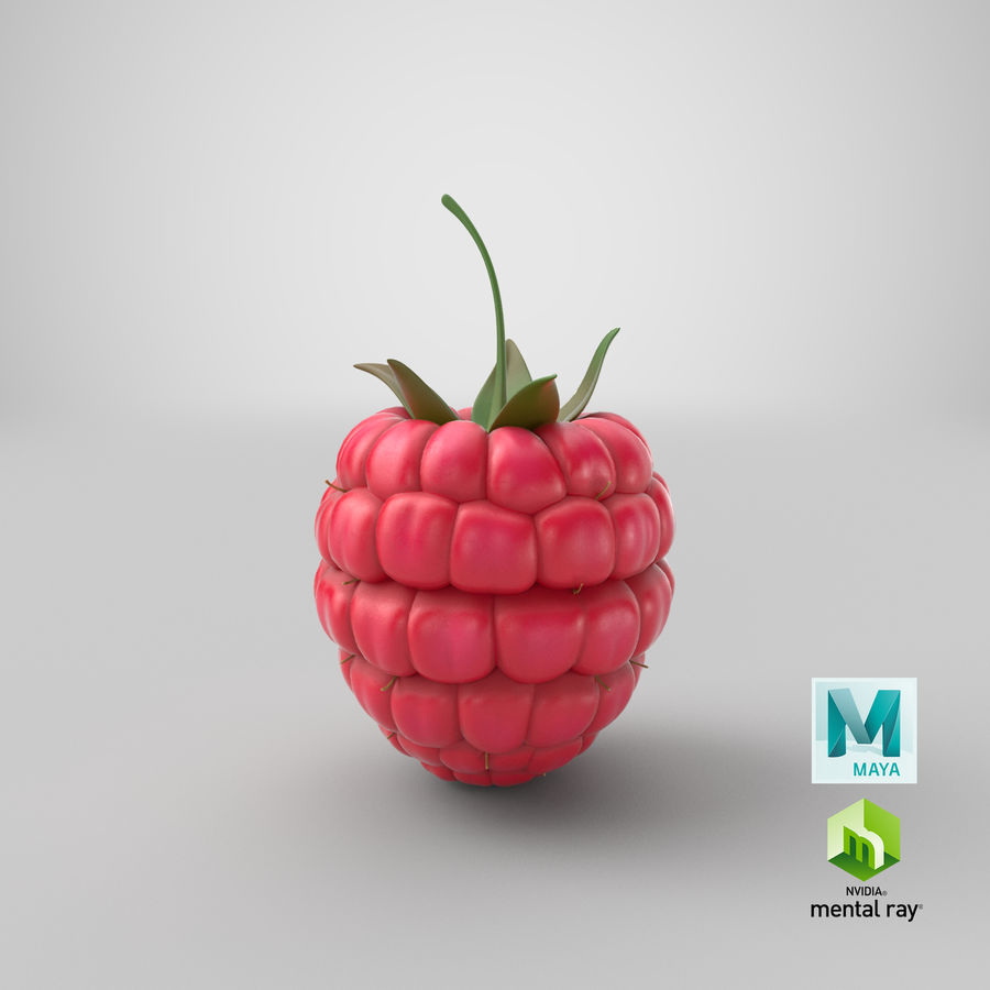 Fresh Cartoon Raspberry royalty-free 3d model - Preview no. 2
