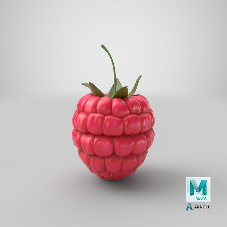 Fresh Cartoon Raspberry royalty-free 3d model - Preview no. 1