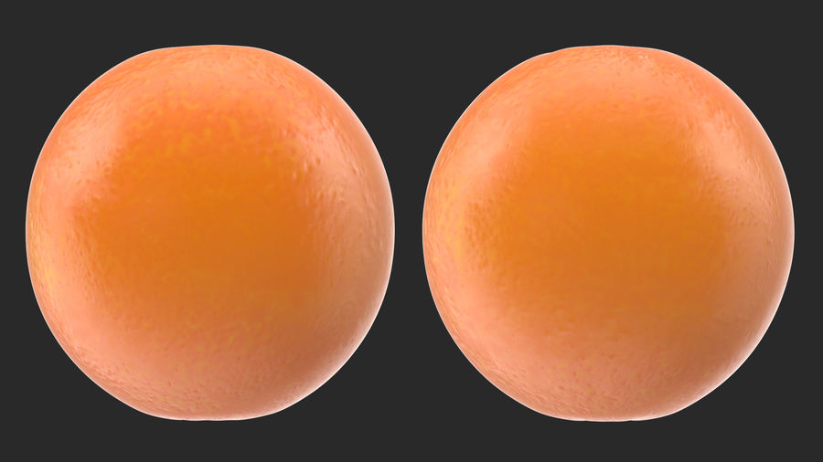 Whole Ripe Orange Fruit Cartoon royalty-free 3d model - Preview no. 5