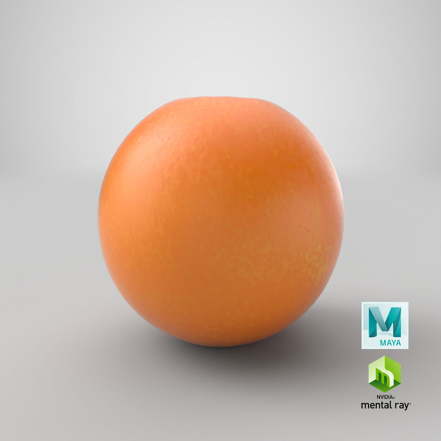 Whole Ripe Orange Fruit Cartoon royalty-free 3d model - Preview no. 29