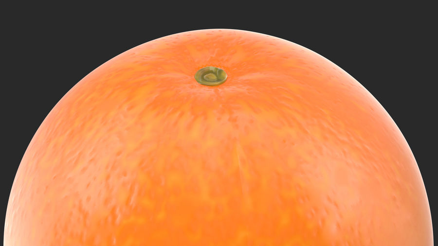 Whole Ripe Orange Fruit Cartoon royalty-free 3d model - Preview no. 6