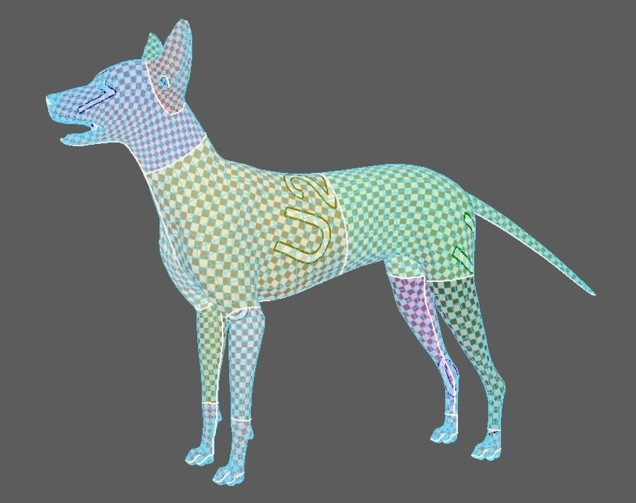 Meksikalı Tüysüz Köpek royalty-free 3d model - Preview no. 8