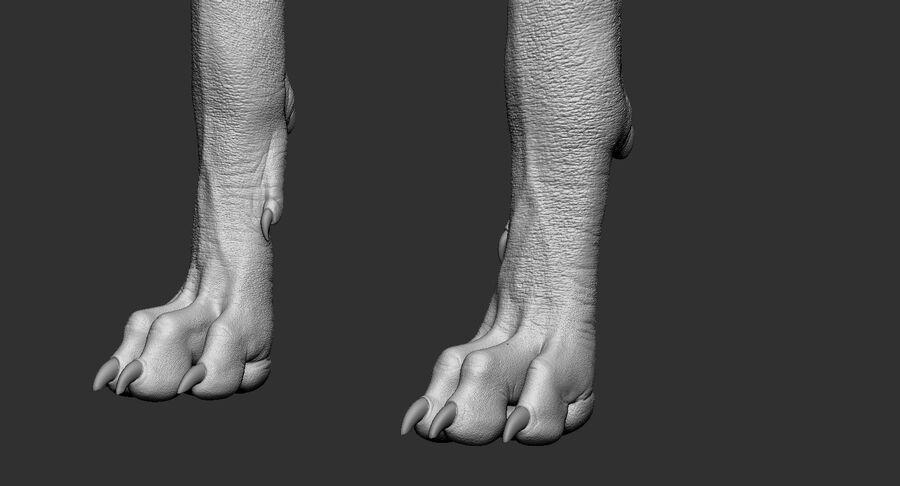 Meksikalı Tüysüz Köpek Tam Anatomi Modeli royalty-free 3d model - Preview no. 31
