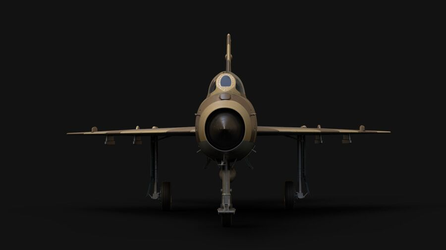 MiG-21 Fighter royalty-free 3d model - Preview no. 6