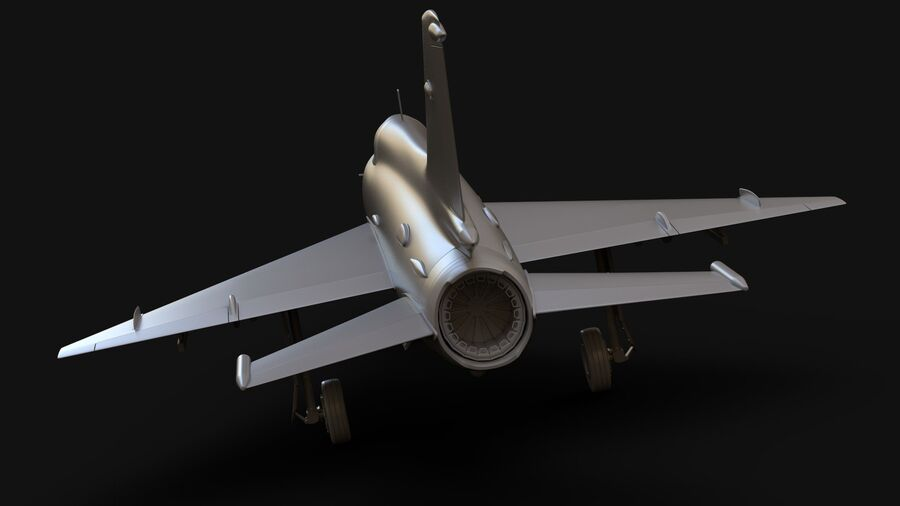 MiG-21 Fighter royalty-free 3d model - Preview no. 10
