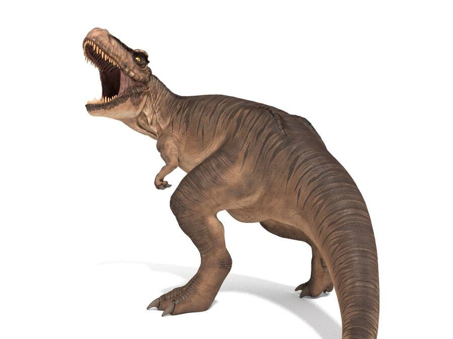 Tyrannosaurus Rex Rigged royalty-free 3d model - Preview no. 2