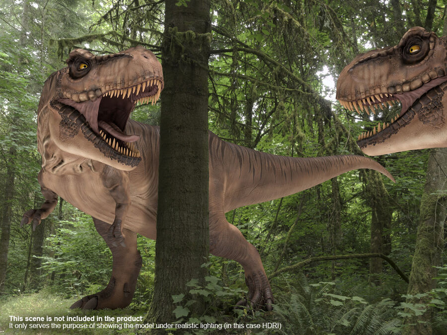 Tyrannosaurus Rex Rigged royalty-free 3d model - Preview no. 21