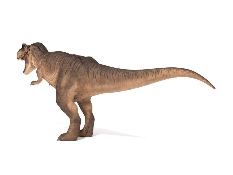 Tyrannosaurus Rex Rigged royalty-free 3d model - Preview no. 5